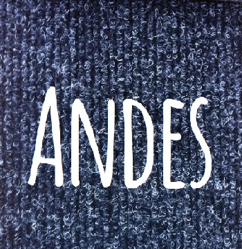 ANDES COVER1